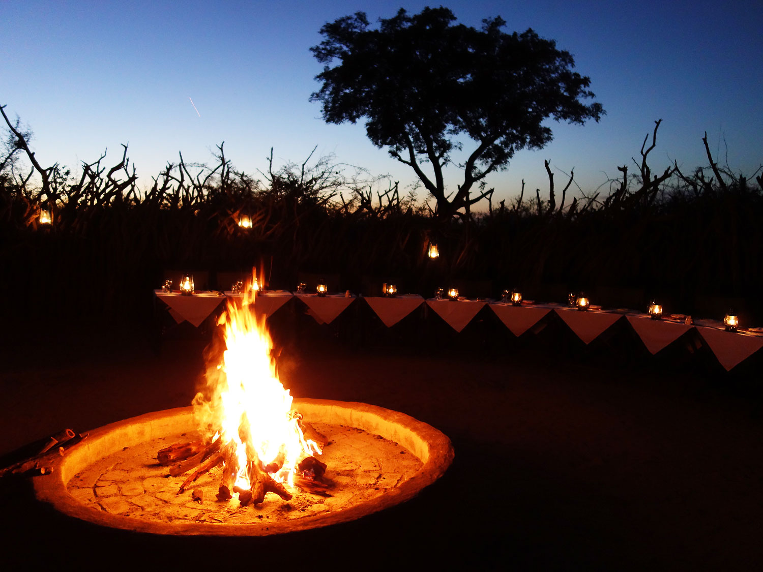 Boma Dinner – Outdoor Dining Experience around the ...